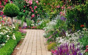 حديقة المنزل