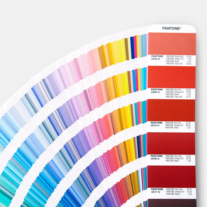 كيفية إختيار ألوان الطلاء