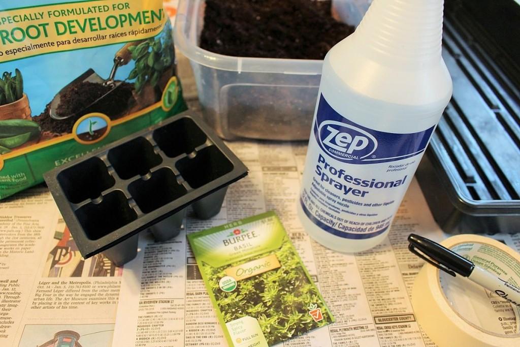 كيفية زراعة الريحان